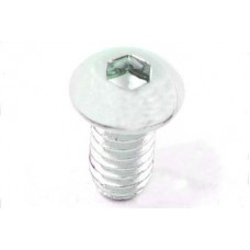 Allen Button Head Screws Chrome 1/4