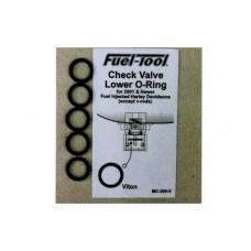 EFI Check Valve O-Rings 14-0586