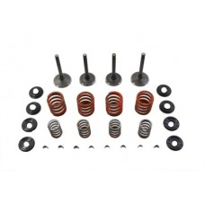 Nitrate Valve and Spring Kit 11-0794