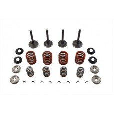 Nitrate Valve and Spring Kit 11-0795