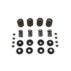 Valve Spring Kit 13-9211